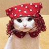 Gypsy Cat