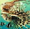 Lionfish Siryn