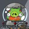 Pig cracked helmet