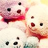 bear 22