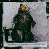 bear 54