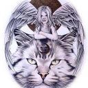 tigers lions avatars 0322